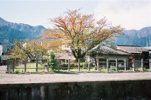 CNV000021